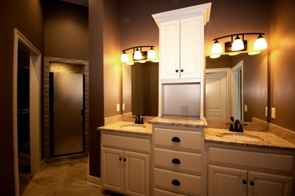 Master Bathroom Vanity and Shower